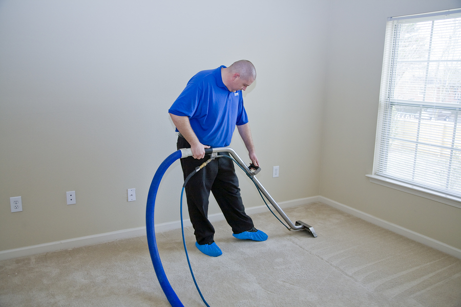 Ayoub oriental carpet cleaning service