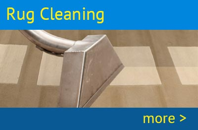 Birminghams carpet and carpet cleaning service professional